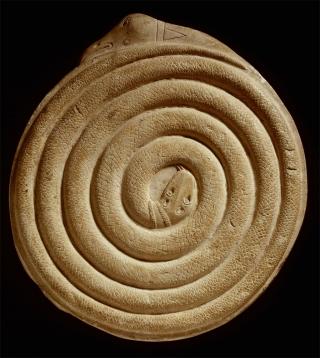 Espiral Cósmica da Serpente