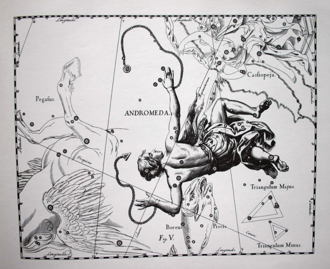 Johannes Hevelius - Andromeda