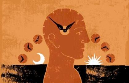 Ritmo Circadiano / Stephen Sedam / Los Angeles Times